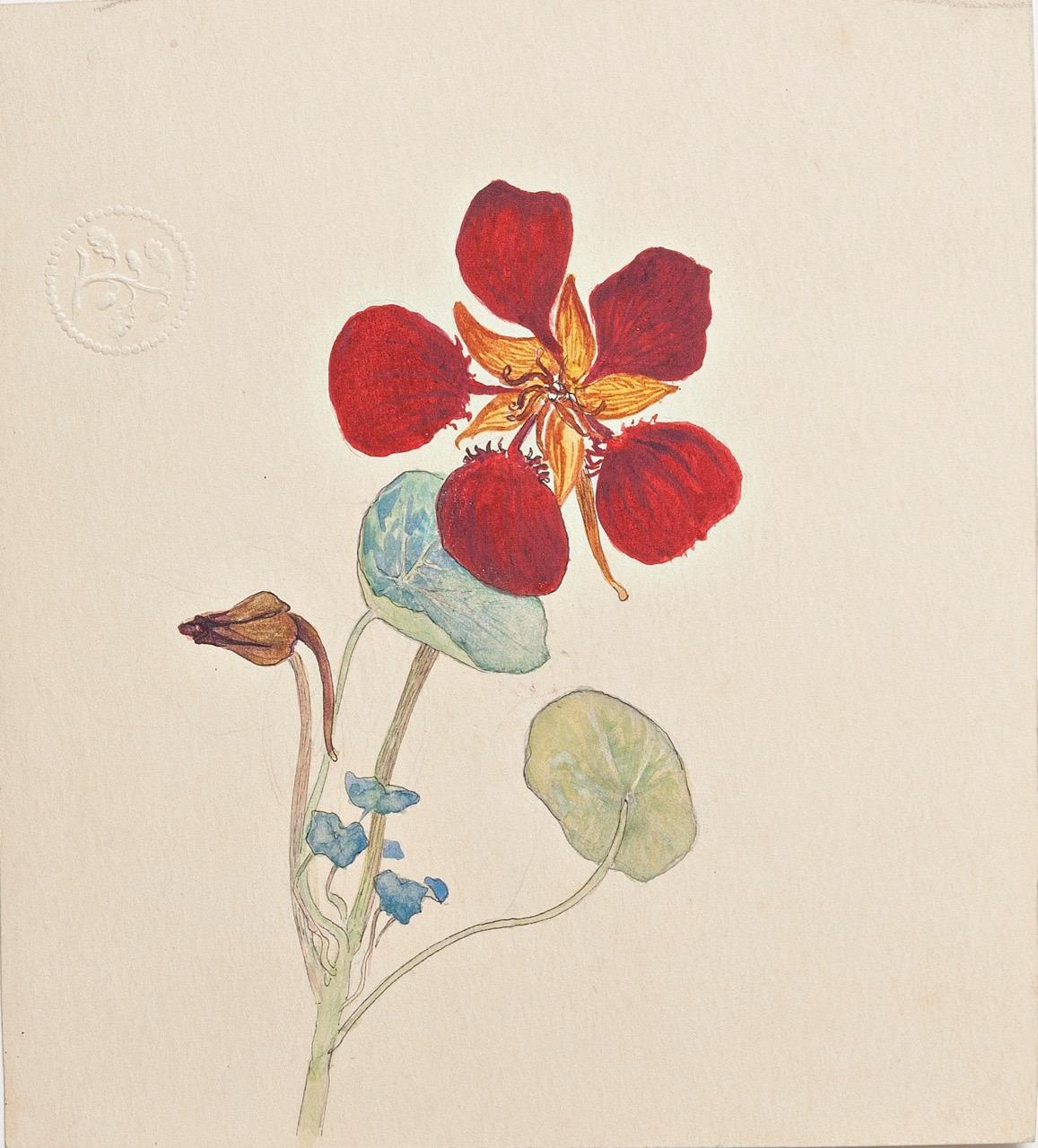 Resultado de imagen de hilma af klint botanica